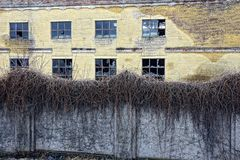 An old abandoned building with broken windows behind a fence of overgrown plants Royalty Free Stock Photo