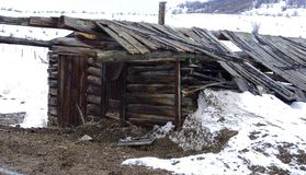 Old abandoned cabin. Old turn of the century abandoned cabin in the mountains of Colorado Royalty Free Stock Image