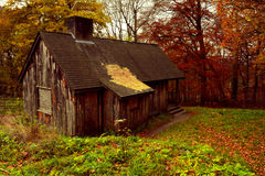 Old Abandoned Cabin in the Woods of  Ashridge Estate, Hertfordshire, England in Autimn Stock Image