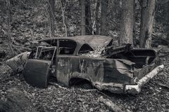 Old abandoned car from the fifties. Old vehicle from the fifties abandoned long ago and left to rust in the forest Royalty Free Stock Image