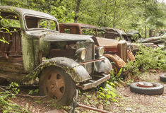 Old abandoned cars at Opal Creek Mining Town. Stock Photo
