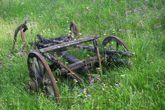 Old abandoned cart among wild flowers. An old abandoned cart among a pasture with wild flowers Stock Photo