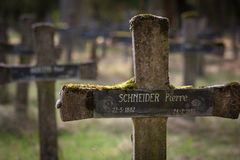 Old abandoned cemetery insane people Royalty Free Stock Photography
