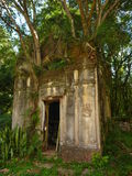 Old abandoned cemetery in ruins of jesuit missions in argentina Stock Photos