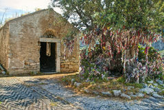 Old abandoned church with big olive tree and colourful rags Royalty Free Stock Photos
