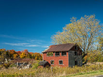 Old Abandoned Contry Barn In Fall. Country house in fall trees full of color in autumn with green lawn Royalty Free Stock Images