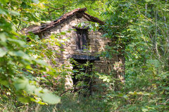 Old abandoned cottage in the woods Stock Photography