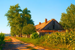 Old abandoned farm house on sunny summer day Royalty Free Stock Photography