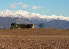 Old abandoned farm with a single tree in Friuli . on Julian Alps background in winter.  Stock Photography