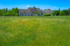 Old abandoned farmhouse in field Royalty Free Stock Photo