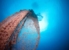 Old abandoned fishing net. With squid eggs Royalty Free Stock Photo