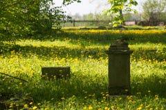 Old abandoned graveyard Royalty Free Stock Image