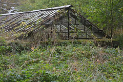 Old, abandoned greenhouse Stock Images