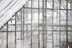 Old, abandoned greenhouse in the snow Stock Image