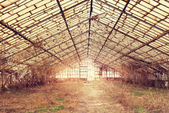 Old abandoned hothouse. Farming building stock images
