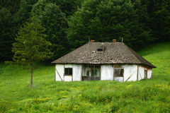 Old abandoned house. Near a forest stock photo