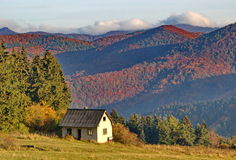 Old abandoned house and colorful dense forest in autumn time Royalty Free Stock Photo