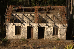 Old Abandoned House in Forest Royalty Free Stock Photography