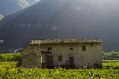 Old abandoned house. In the mountains in Italy Royalty Free Stock Images