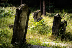 Old abandoned Jewish cemetery. Blurred effect Illustration Stock Photo