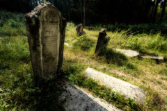 Old abandoned Jewish cemetery. Blurred effect Illustration Royalty Free Stock Photography