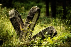 Old abandoned Jewish cemetery. Blurred effect Illustration Royalty Free Stock Photos