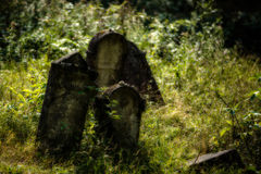 Old abandoned Jewish cemetery. Blurred effect Illustration Royalty Free Stock Images