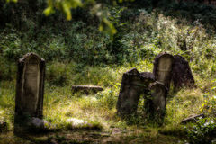 Old abandoned Jewish cemetery. Blurred effect Illustration Royalty Free Stock Photo