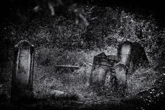 Old abandoned Jewish cemetery BW illustration Stock Photography