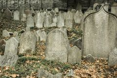 Jewish cemetery in Prague. Old abandoned Jewish cemetery. Historical, halloween, sightseeing concept stock photo