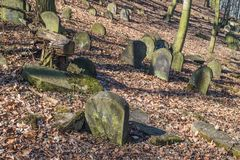 Old Jewish cemetery in Będzin, Poland Royalty Free Stock Images