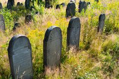Old abandoned Jewish cemetery in the Ukrainian Carpathians Stock Image