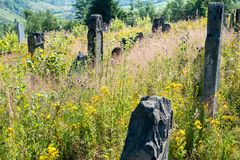 Old abandoned Jewish cemetery in the Ukrainian Carpathians Royalty Free Stock Photo