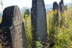 Old abandoned Jewish cemetery in the Ukrainian Carpathians Royalty Free Stock Images