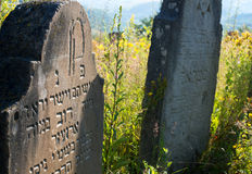 Old abandoned Jewish cemetery in the Ukrainian Carpathians Royalty Free Stock Photos