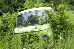 Old abandoned overgrown car Royalty Free Stock Images