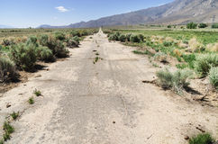 Old Abandoned Paved Road Stock Photo