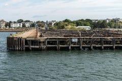 Old Abandoned Pier in Boston - massachusetts USA wooden broken dock royalty free stock image