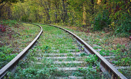 Old abandoned railway in forest Stock Images