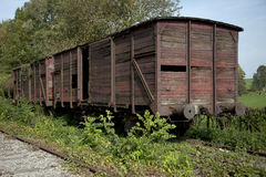 Old abandoned railway wagon on the rails in the forest Royalty Free Stock Photography
