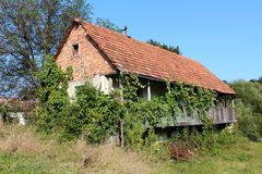Old abandoned red brick family house with wooden porch completely overgrown with crawler plants with rusted agricultural tool left royalty free stock photo