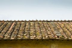 Old abandoned roof Royalty Free Stock Photography