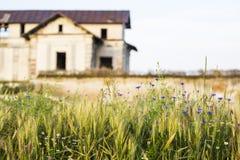 Old, abandoned, ruined house Stock Photo