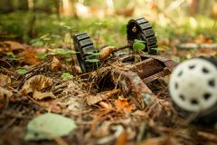 An old, abandoned toy left in the forest. Rusty, children`s typewriter in the autumn foliage stock images
