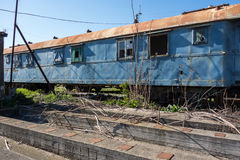 Old abandoned trains in sunny day Royalty Free Stock Photography