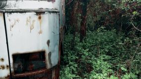 An old abandoned truck without a headlight in a deep forest. This is footage of An old abandoned truck without a headlight in a deep forest in southeastern stock video