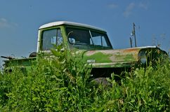 Old Abandoned Truck in the Long Grass Stock Photo