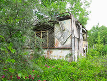 Old abandoned wooden barn overgrown with vegetation Royalty Free Stock Image