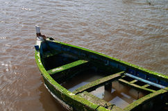 Old sinking boat Royalty Free Stock Images