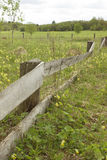 Old abandoned wooden fence, a fence, a meadow. Old abandoned wooden fence, a fence, a flowering meadow Stock Photography